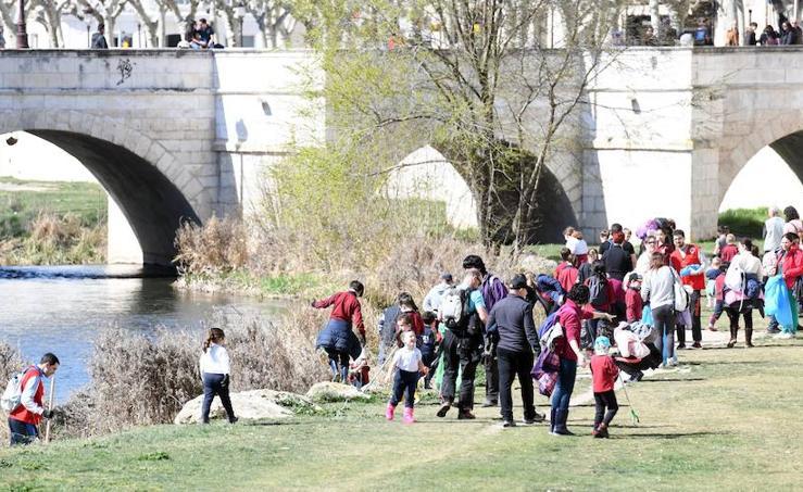 Imágenes de la limpieza del río Arlanzón