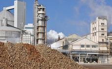 Azucarera invertirá 14 millones de euros, en los próximos 5 años, en su fábrica de Miranda
