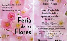 La Plaza de España de Miranda acoge el 14 de abril la Feria de las Flores