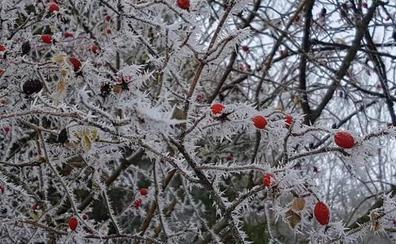 Palacios de la Sierra marca la temperatura más baja del país con 6,6 grados bajo cero