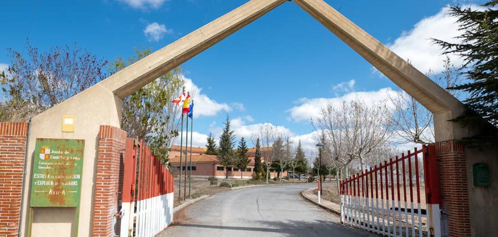 Ávila reabrirá su escuela de capacitación para formar a jóvenes en el sector porcino