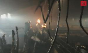 Seiscientos cerdos resultan calcinados en un incendio en una granja de Sauquillo de Boñices