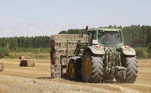 Burgos pierde 800 trabajadores en el primer trimestre del año
