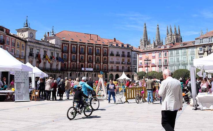 Burgos celebra el Día de las Familias en la Plaza Mayor