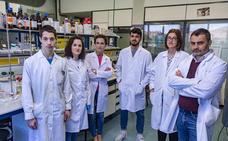 Investigadores de la UBU y Castilla La Mancha estudian nuevos compuestos para producir reacciones químicas usando la luz