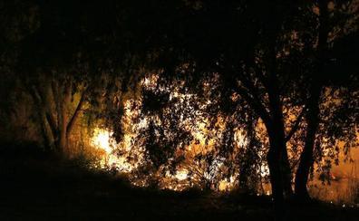 «Entiendo que la gente esté enfadada», afirma el autor del incendio en la orilla del Carrión de Palencia