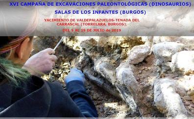 La XVI Campaña de Excavaciones Paleontológicas en La Demanda se desarrollará del 5 al 19 de julio en el yacimiento de Torrelara