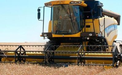 Los agricultores esperan que la lluvia riegue los campos para salvar la campaña