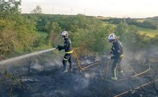 Los Bomberos de Burgos sofocan un incendio forestal en Carcedo de Burgos