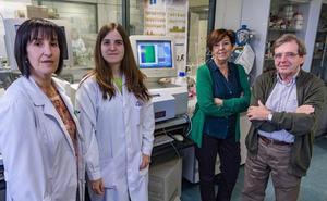 Investigadores de la UBU desarrollan una técnica para medir la presencia de colorantes alimentarios