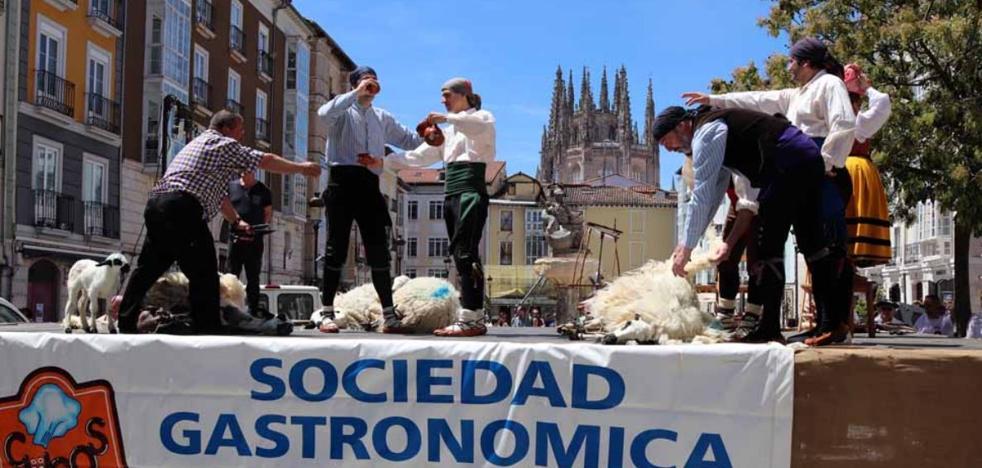 La Fiesta del Esquileo se suspende ante la falta de apoyo municipal a Los Cucos