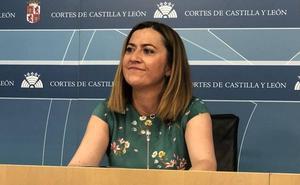 El PSOE carga contra las medidas acordadas entre PP y Cs y acusa a Igea de hacer «jueguecitos»