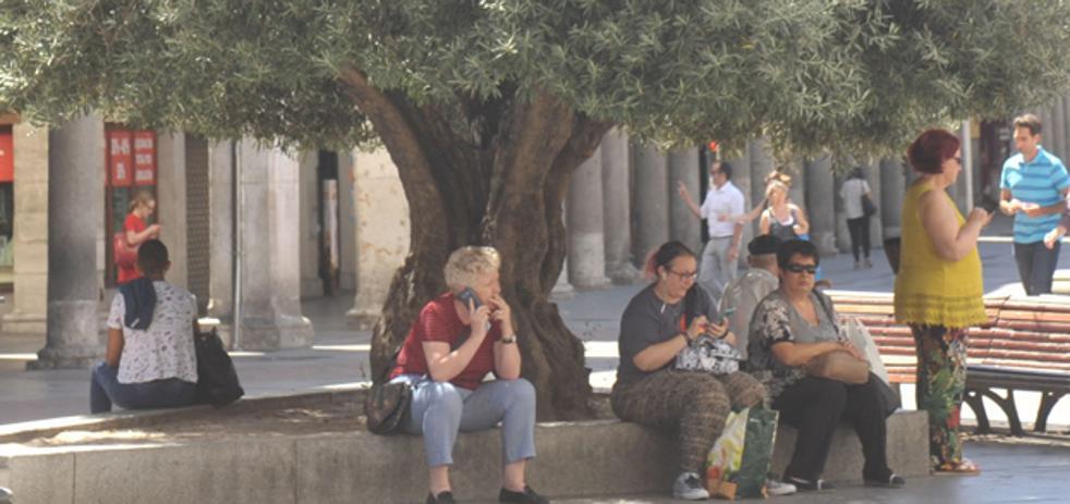 El Colegio de Médicos de Burgos recomienda que mayores, niños y personas enfermas extremen precauciones ante la ola de calor