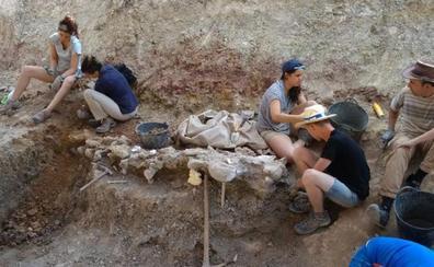 La tercera campaña de excavaciones en Torrelara comienza con el objetivo de avanzar en una identificación más precisa del animal
