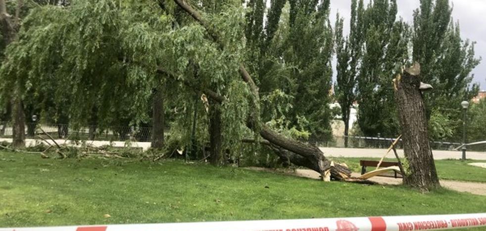 El 112 gestiona más de 90 emergencias en tres horas relacionadas con las tormentas y las fuertes rachas de viento