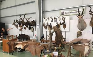 Un fin de semana repleto de actividades en la IV Feria de Caza, Pesca y Vida Rural en Briviesca