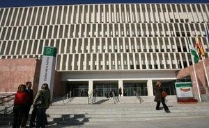 La Fiscalía de Málaga pide suspender el ingreso en prisión del joven que mató a un ladrón