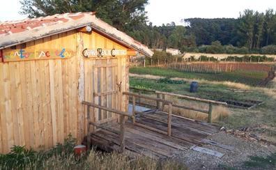 Los productos del huerto escuela y colectivo de Quintanar de la Sierra: hortalizas, aprendizaje y soberanía alimentaria