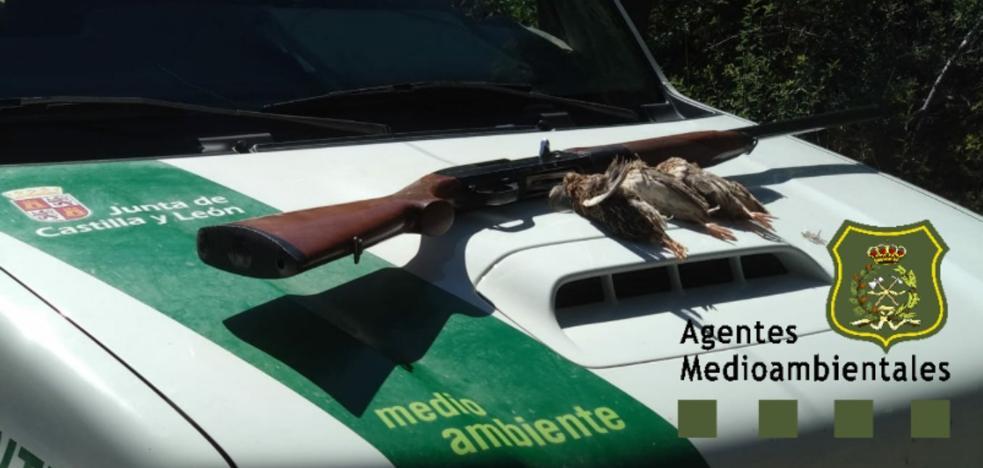 Los agentes medioambientales denuncian a un cazador por ir indocumentado