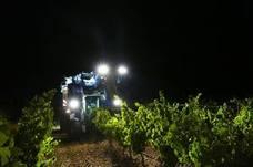 Los viticultores aplauden la llegada de la lluvia porque «empezaba a hacer falta»