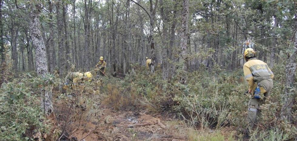 CCOO vuelve a denunciar la «precariedad laboral» de las cuadrillas forestales de la Diputación
