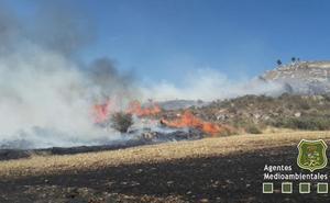 Dos incendios en Mansilla de Burgos calcinan 24 hectáreas