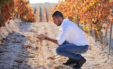 El vino único con identificación digital