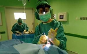 El hospital de Aranda alberga un curso sobre cirugía facial y rinoplastia