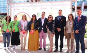 Burgos registró cerca de 500 ictus en 2018 y se trabaja para concienciar sobre el control de la hipertensión arterial