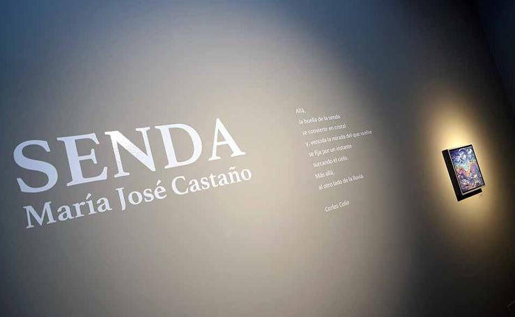 Imágenes de la exposición 'Senda' de María José Castaño