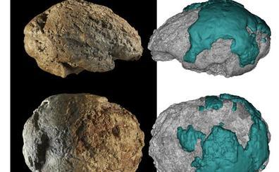 Emiliano Bruner, del CENIEH, coordina un estudio que da a conocer el molde natural del cerebro neandertal de Gánovce