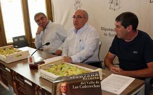 La cosecha de la manzana reineta de Las Caderechas mengua hasta la mitad por las heladas
