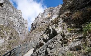 Luz verde a la creación del Parque Natural de Sabinares del Arlanza-La Yecla