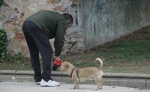 Cs apuesta por crear 32 zonas de esparcimiento canino en Burgos