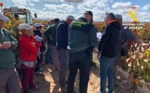 La Guardia Civil detecta a trabajadores en situación irregular durante la vendimia