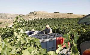 Entran en vigor los aranceles estadounidenses a los productos agroalimentarios españoles