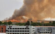 El fuego provocado por un rayo en Villagonzalo calcina 30 hectáreas de terreno agrícola